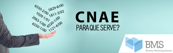CNAE – O QUE É E PARA QUE SERVE NO MARKETING E VENDAS